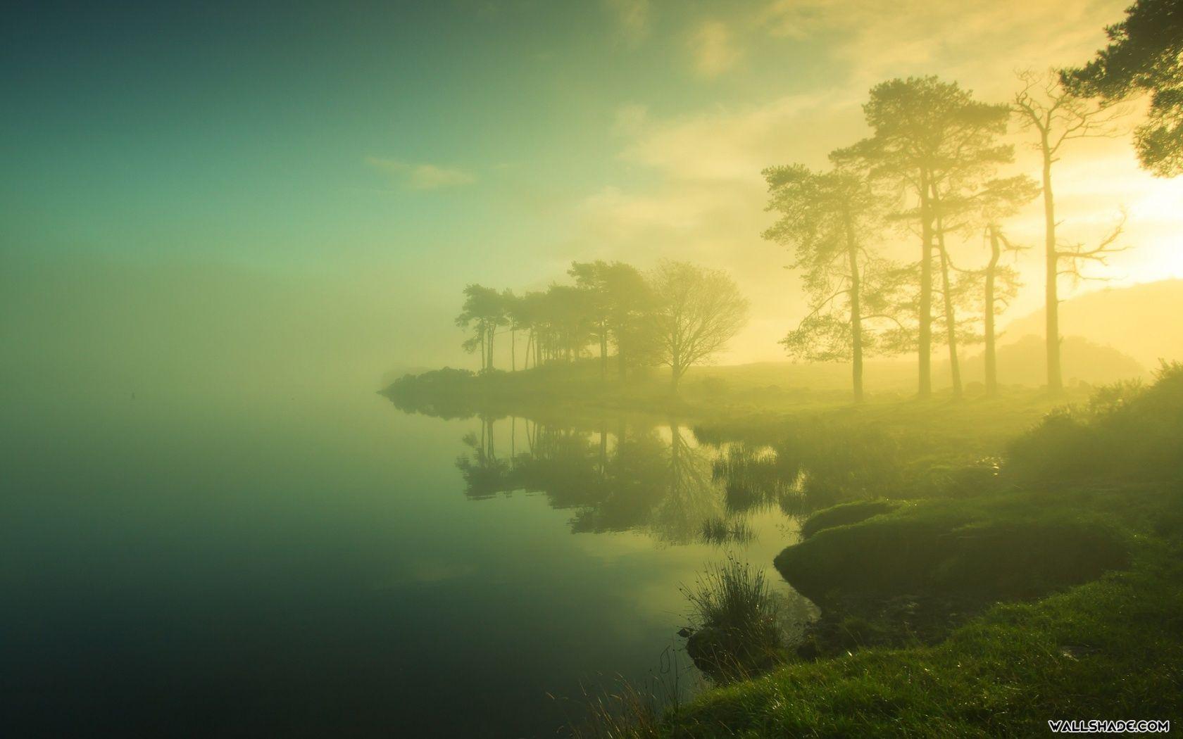 Free Foggy Lake Desktop Wallpaper 16801050 Scenery Nature Good Morning Images Hd wallpaper morning lake trees fog