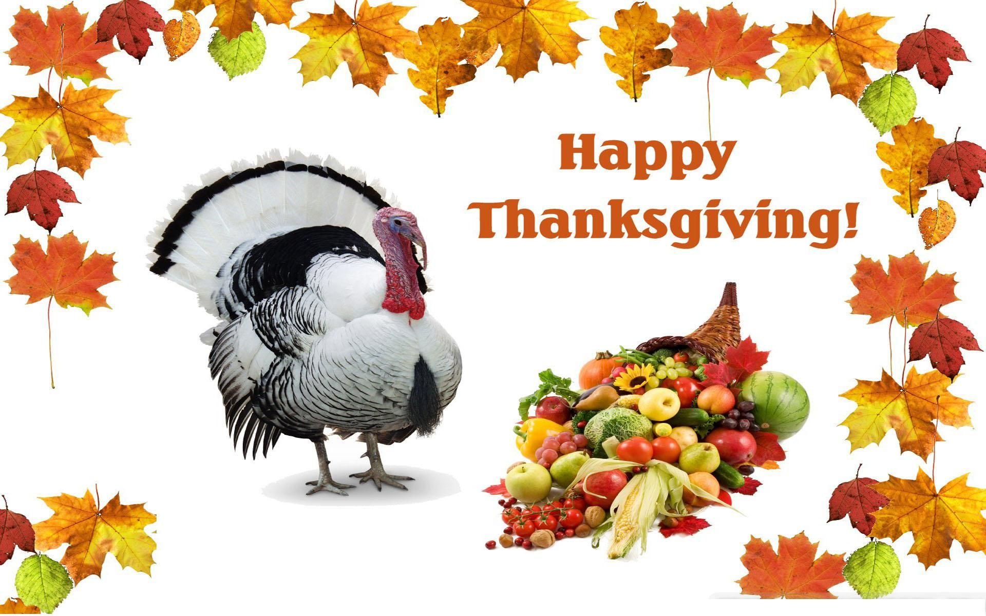 Animated happy thanksgiving pictures thanksgiving day animated happy thanksgiving pictures thanksgiving day pinterest thanksgiving pictures thanksgiving and happy thanksgiving kristyandbryce Images