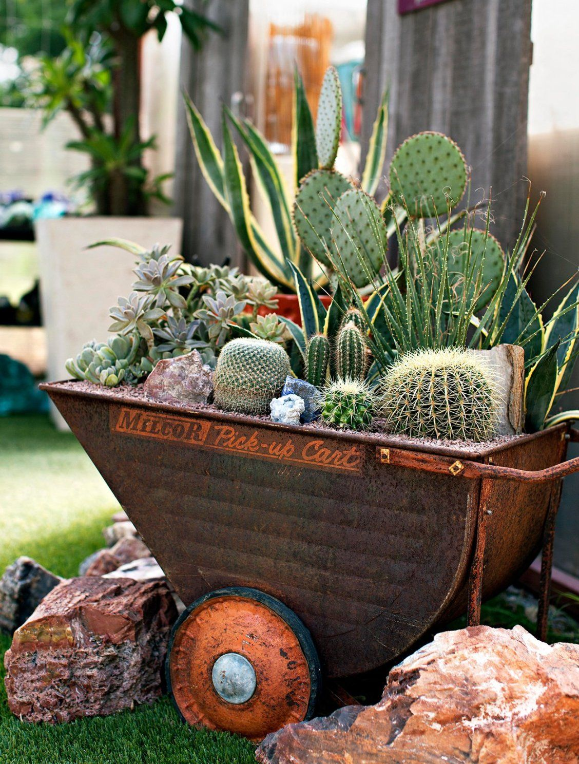 Creative Containers For Succulents Succulents In Containers