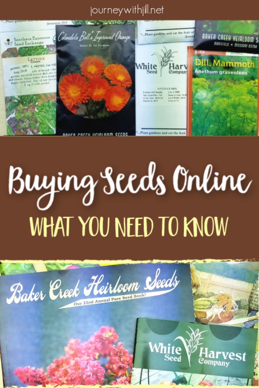 Where To Buy Seeds Buy Seeds Buy Seeds Online Gardening For