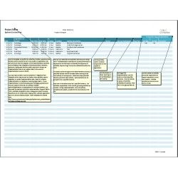 System GoLive Template For Technical Project Managers Plan The