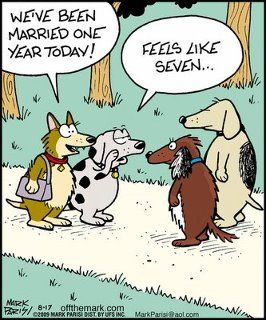 I Feel The 7 Year Itch And It Ain T Fleas This Time Woof Happy Anniversary Funny Anniversary Funny Wedding Anniversary Humor