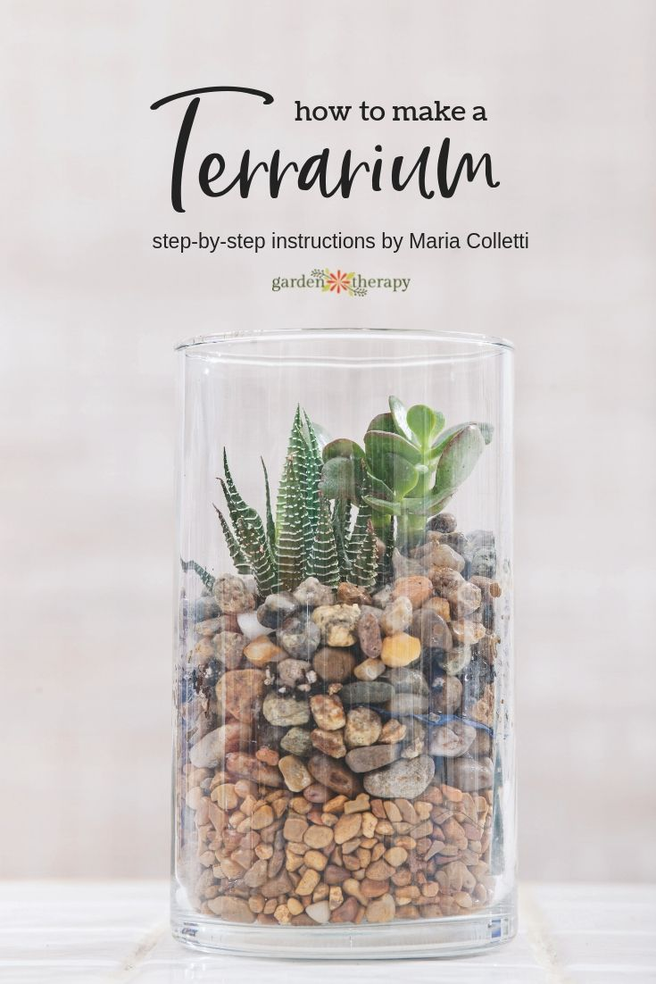 Create a Gorgeous Soilless Terrarium Garden Create a Gorgeous Pebble Terrarium Garden This stepby step tutorial comes to us from terrarium expert and author Maria Collett...