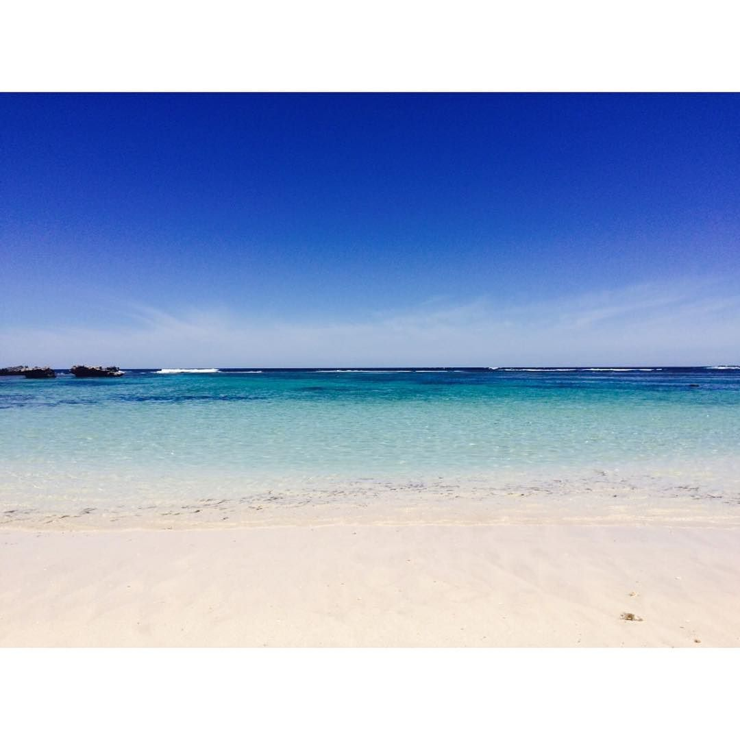 ill in bed all day..rather be here! #takemeback #rottnestisland #perth #travelling #australia by flossharris http://ift.tt/1L5GqLp