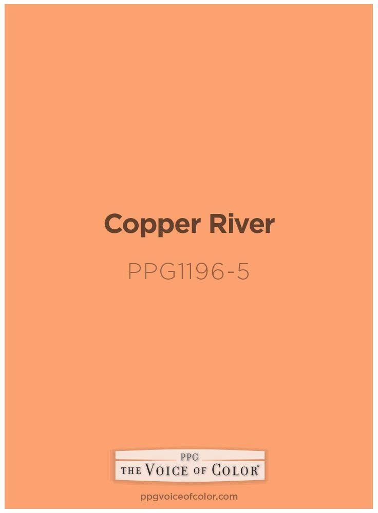 Copper River Ppg1196 5 Ppg Paint Colors Porter Paint Paint