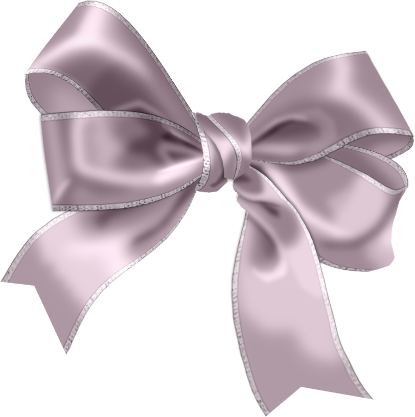 Photo By Barbara Wyckoff Bows Ribbon Bows Silver Bow