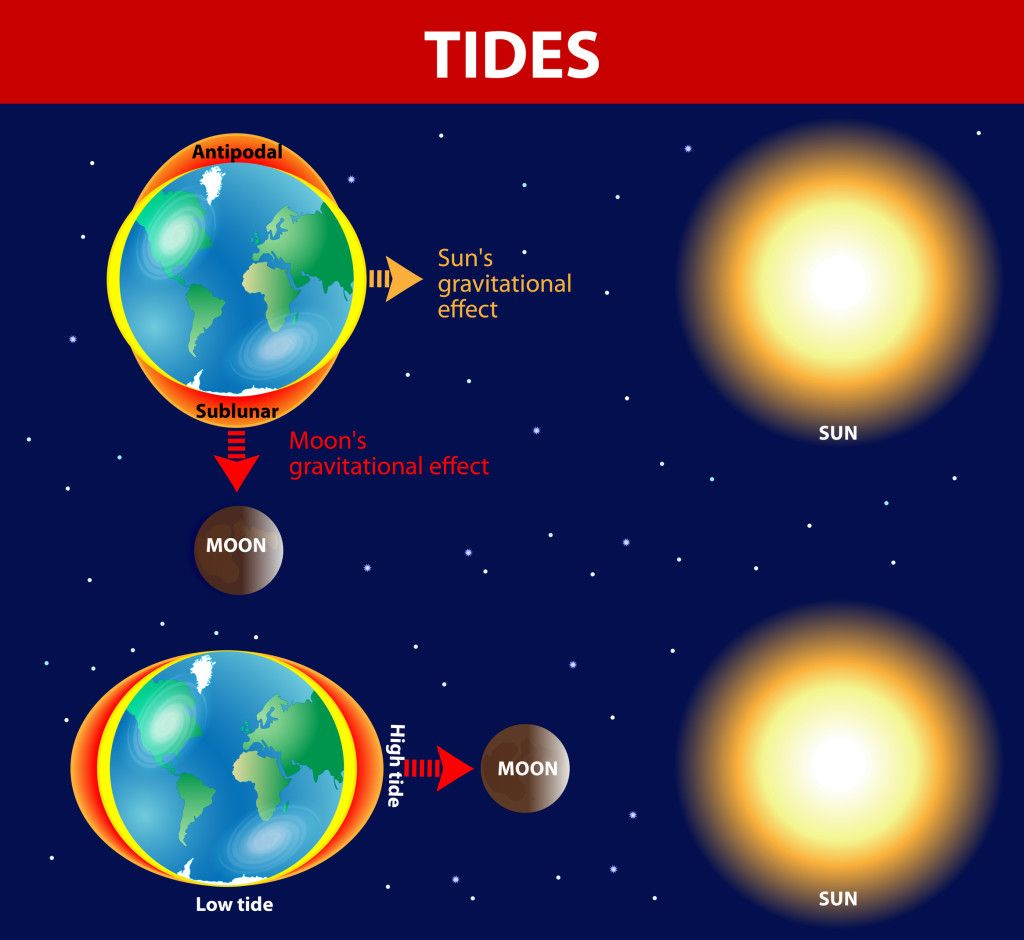 How Tides Are Formed