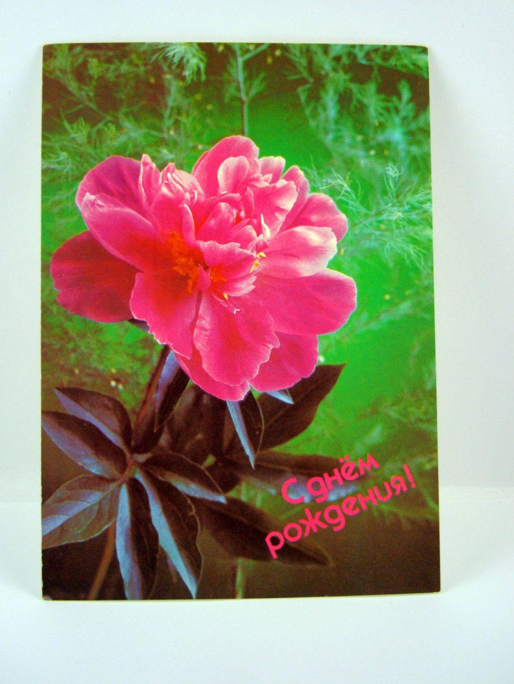 Greeting Card Vintage Birthday Card Vintage Ephemera Vintage Gift