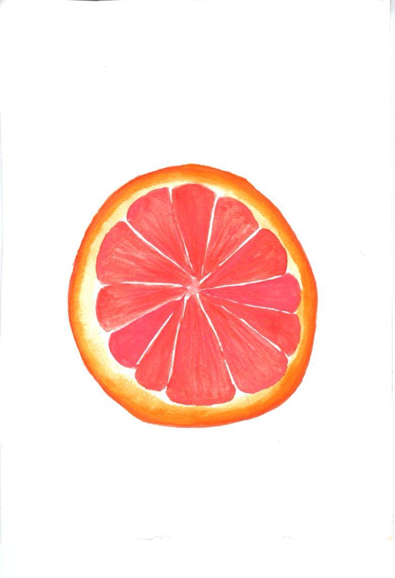Grapefruit print - blood orange print
