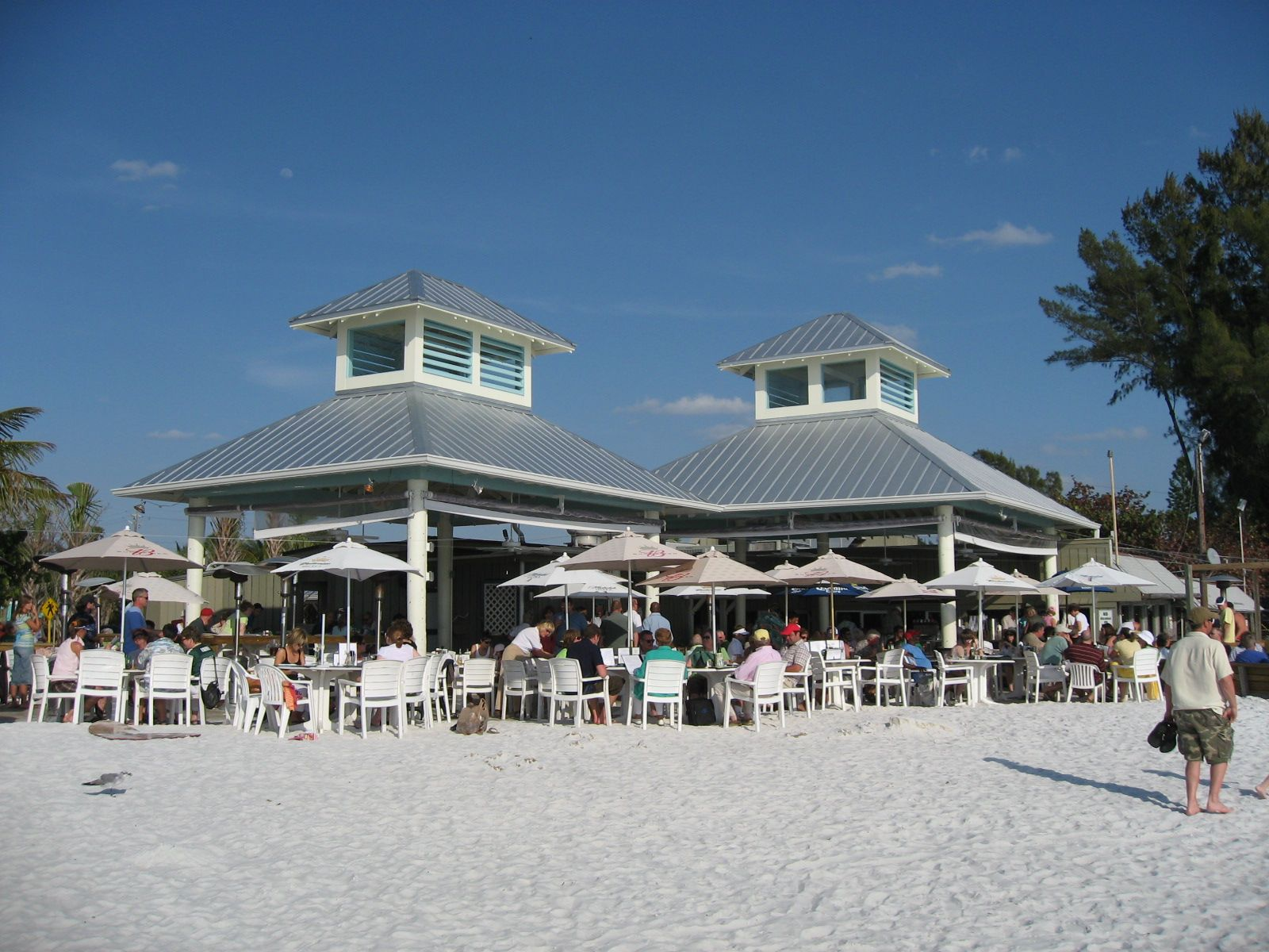 The Famous Grouper Sandwich At Sandbar Restaurant On Anna Maria Island Florida Is Grilled