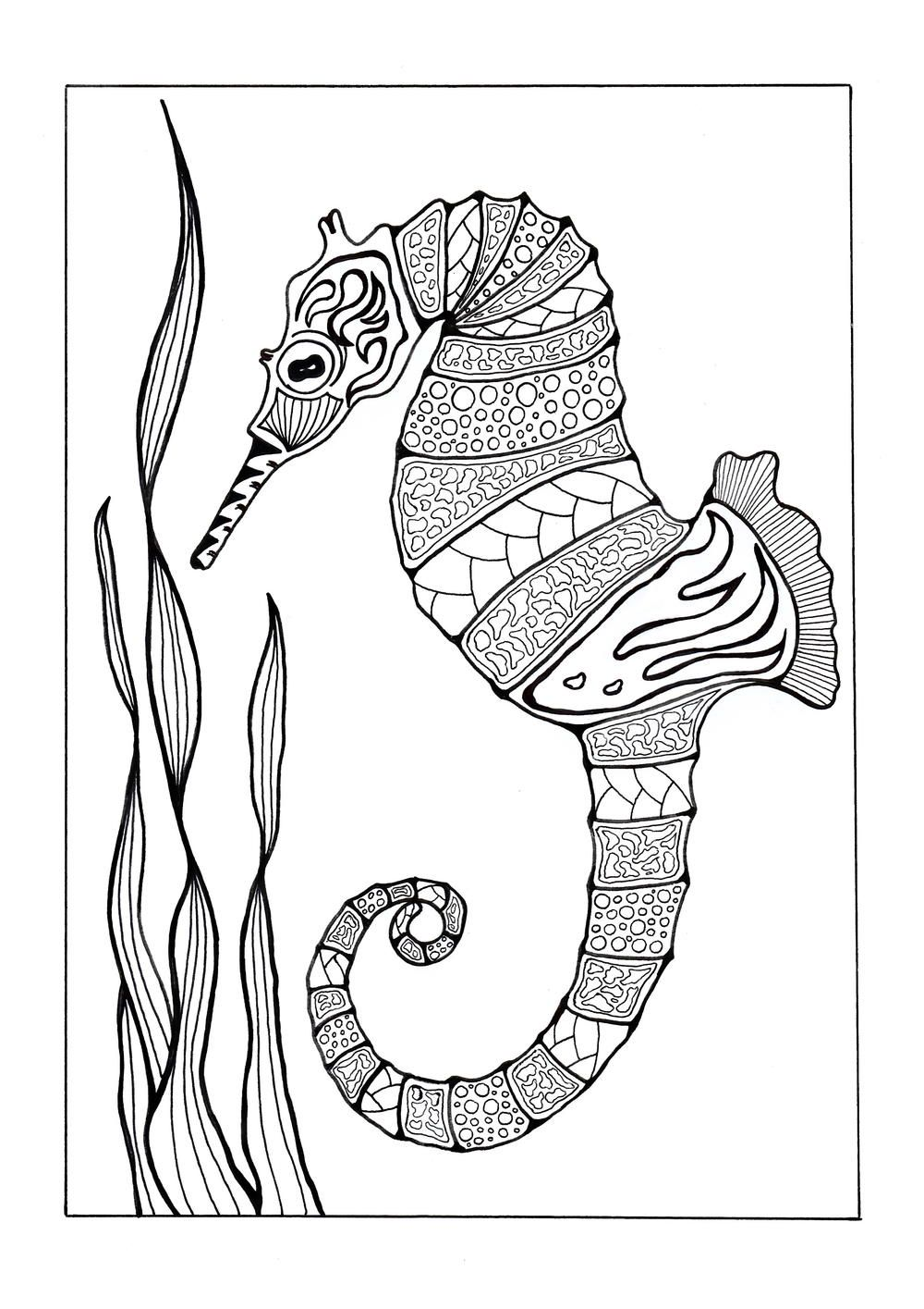 Colorful Seahorse Adult Coloring Page Horse coloring