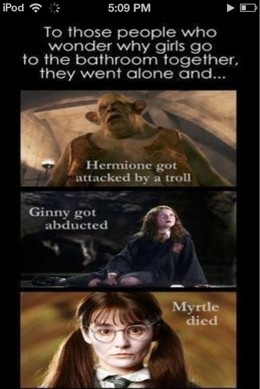 For All Those People Who Wonder Why Girls Don T Go To The Bathroom Alone Harry Potter Puns Harry Potter Memes Hilarious Harry Potter Jokes