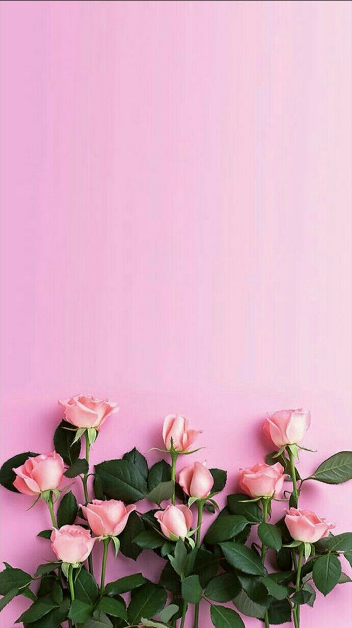 Pin By Sangay On Wallpapers In 2019 Pink Wallpaper Tumblr