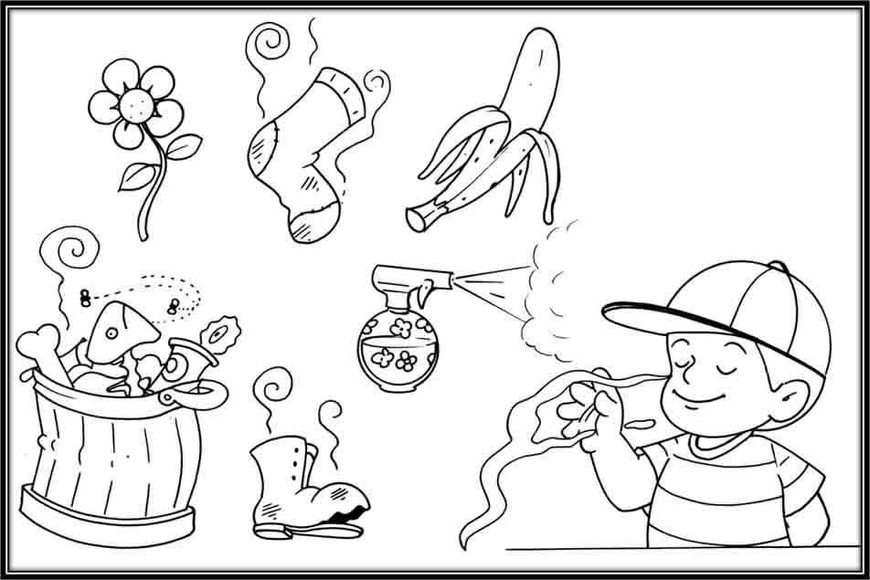 Sense Of Smell Coloring Page Coloring Pages Coloring Pages For Kids Color