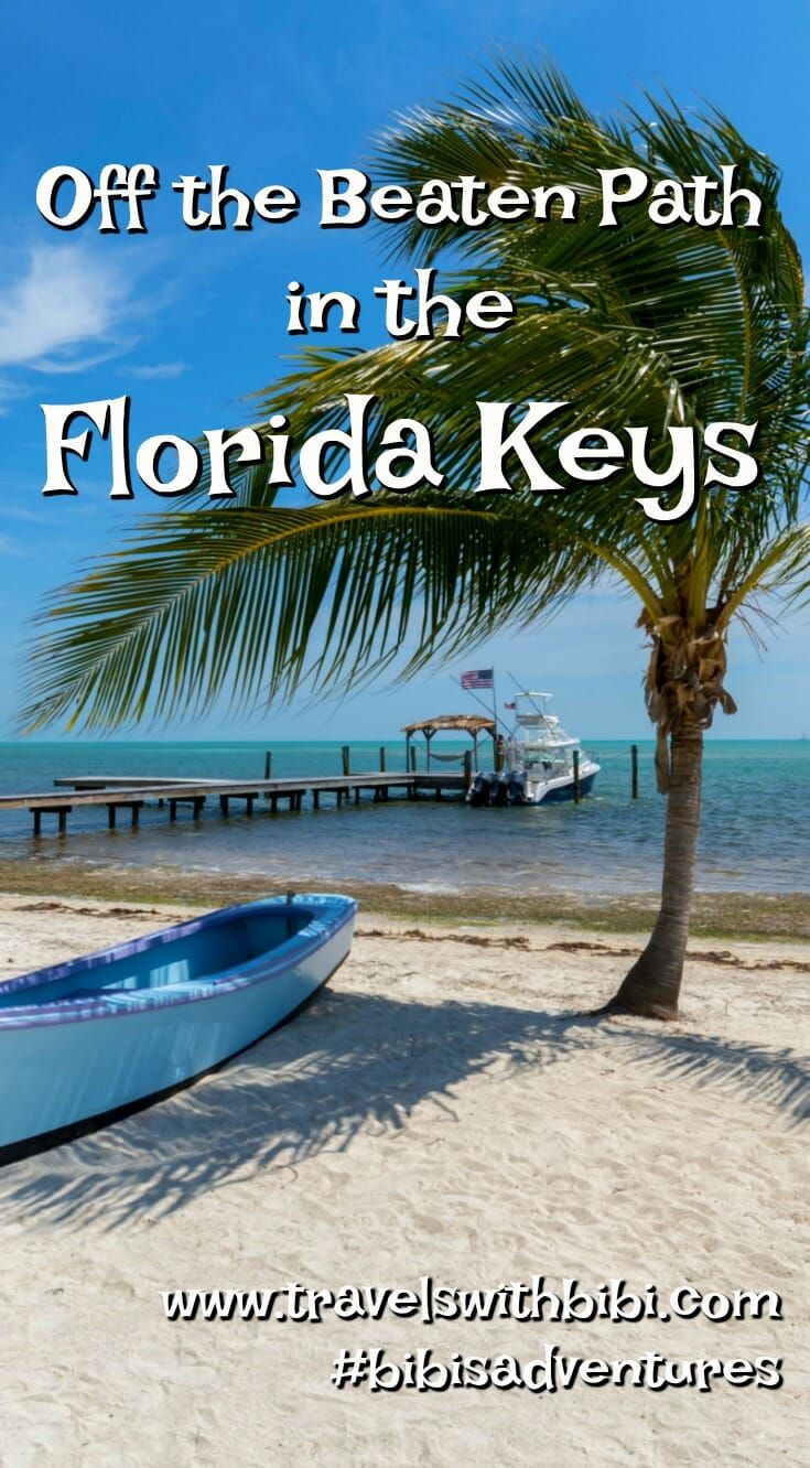 Go beyond key west visit floridas state parks in the
