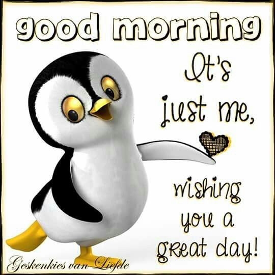 Good Morning, Its Just Me Wishing You A Great Day!
