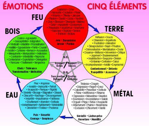 La Kinesiologie 1 Medecine Chinoise Energetique Chinoise Gerer Ses Emotions
