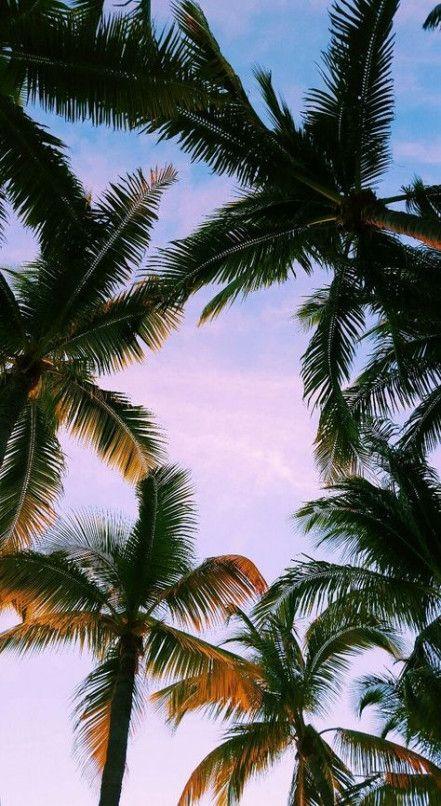 34+ best ideas for nature wallpaper iphone summer beaches
