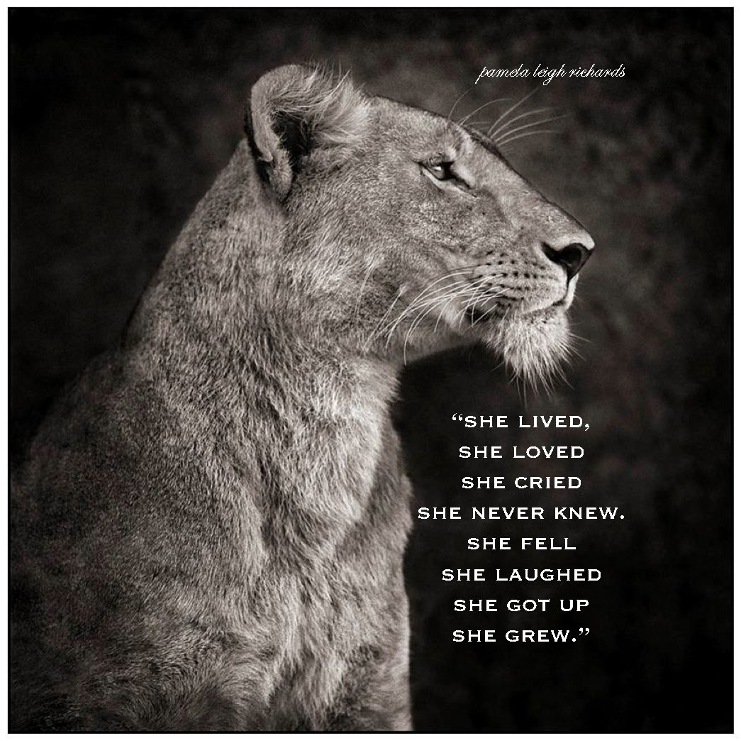 Pin by Adina Iuga on Strong women! | Lion, lioness, Animal ...