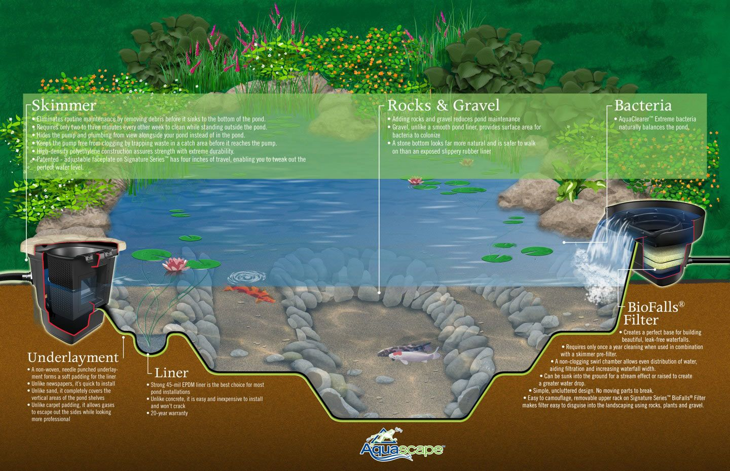 1000 images about pond on pinterest koi ponds ponds and koi garden ponds design ideas - Garden Ponds Design Ideas