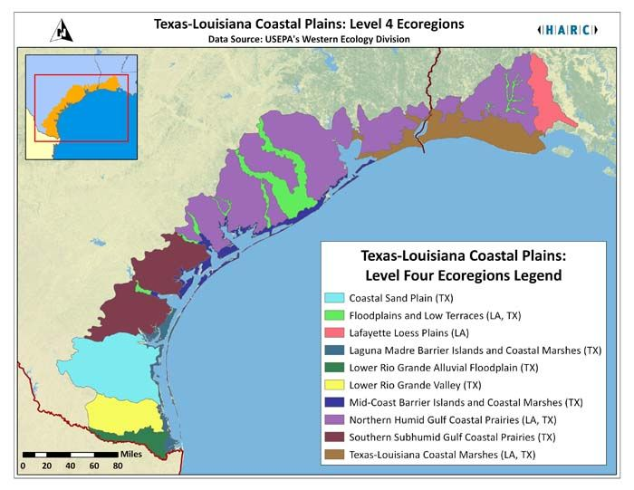 texas coast map | Texas Louisiana Coastal Plains Level 4 Ecoregion ...