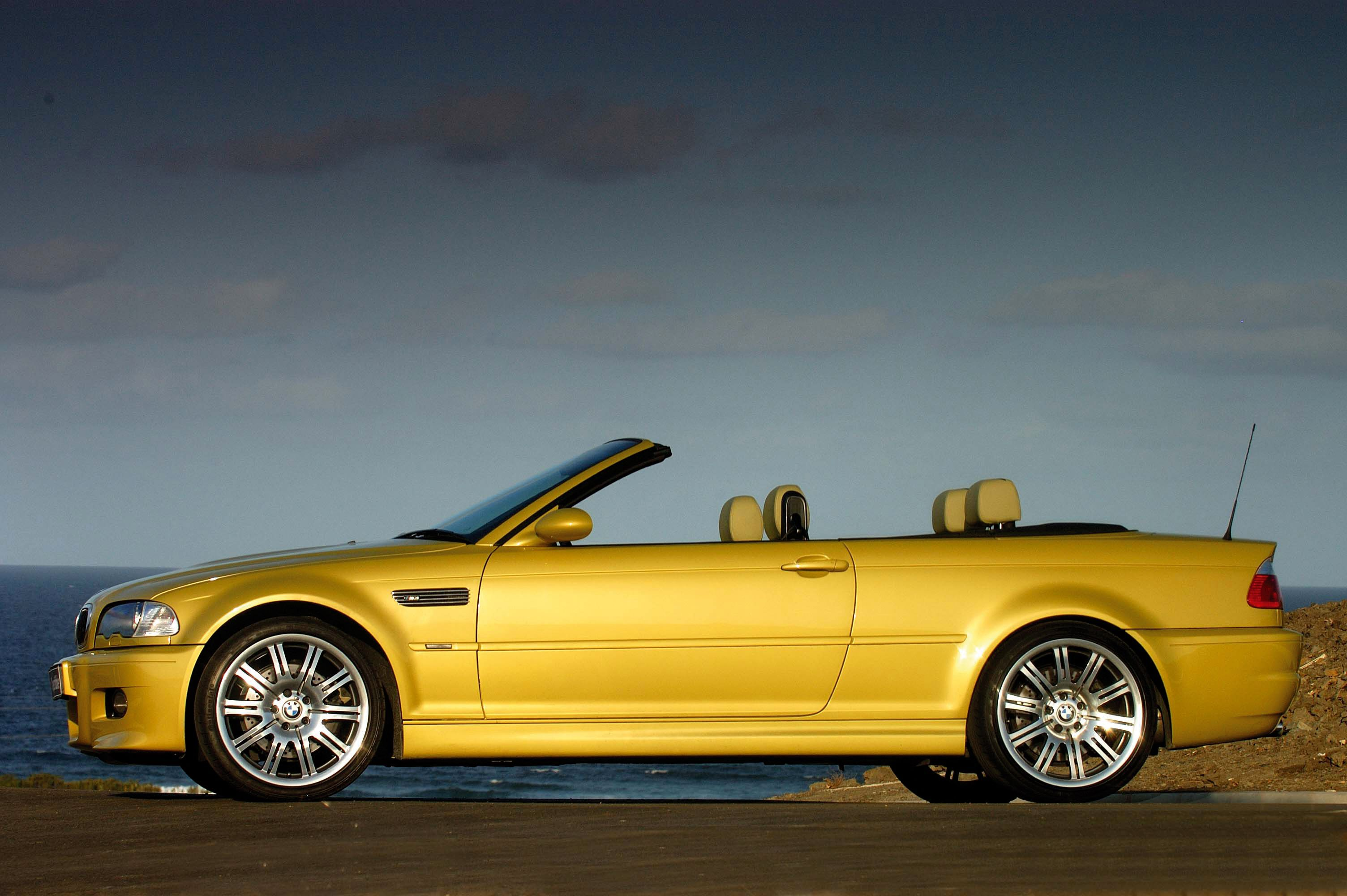 How To Make An Interesting Art Piece Using Tree Branches Ehow Bmw Bmw E46 Bmw Convertible