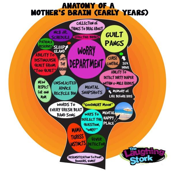 Anatomy of a Mother's Brain (Early Years)
