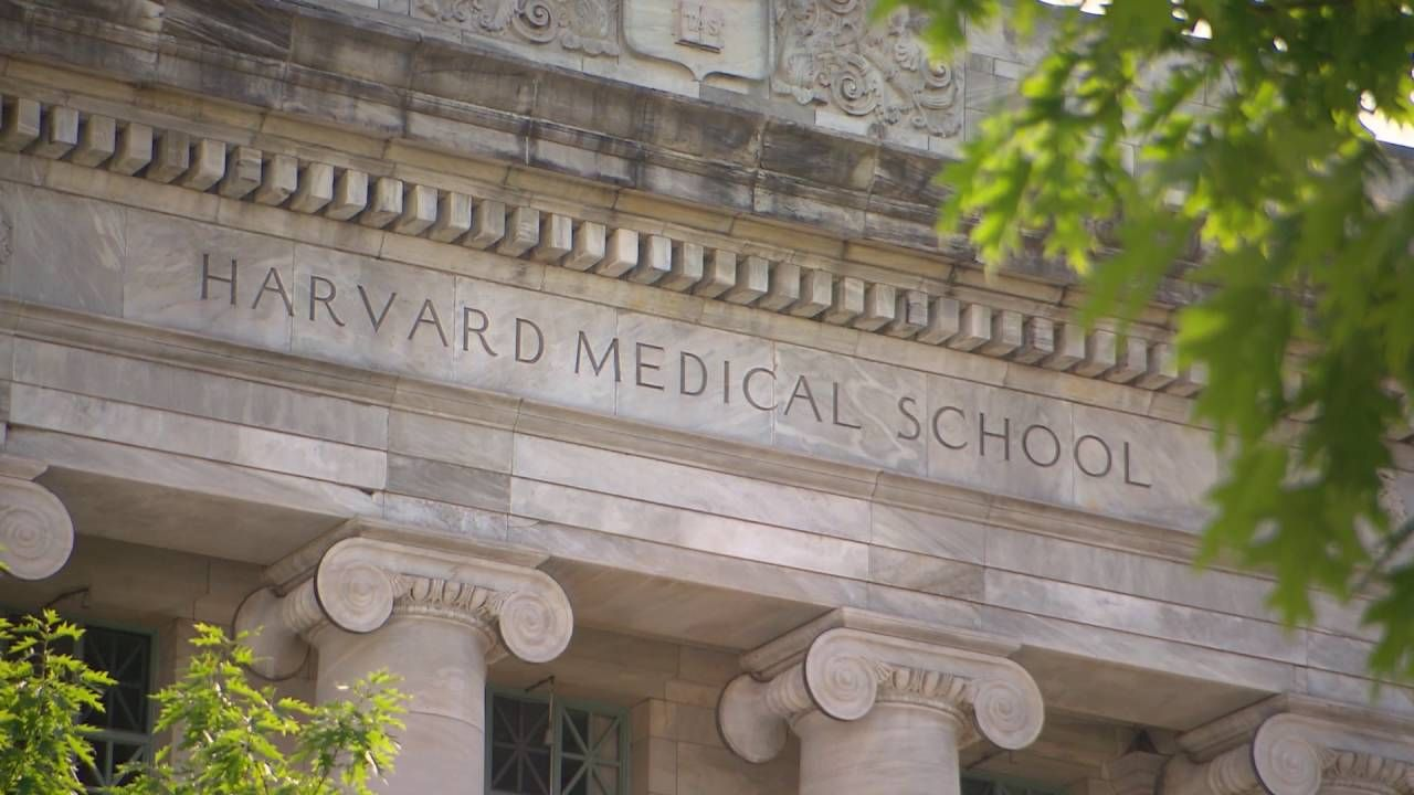 What Do I Need To Do To Get Into Harvard Medical School Harvard Medical School Medical School Medical School Motivation