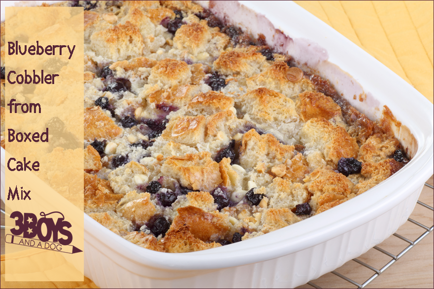 Blueberry Cake Mix Cobbler Recipe Mi And