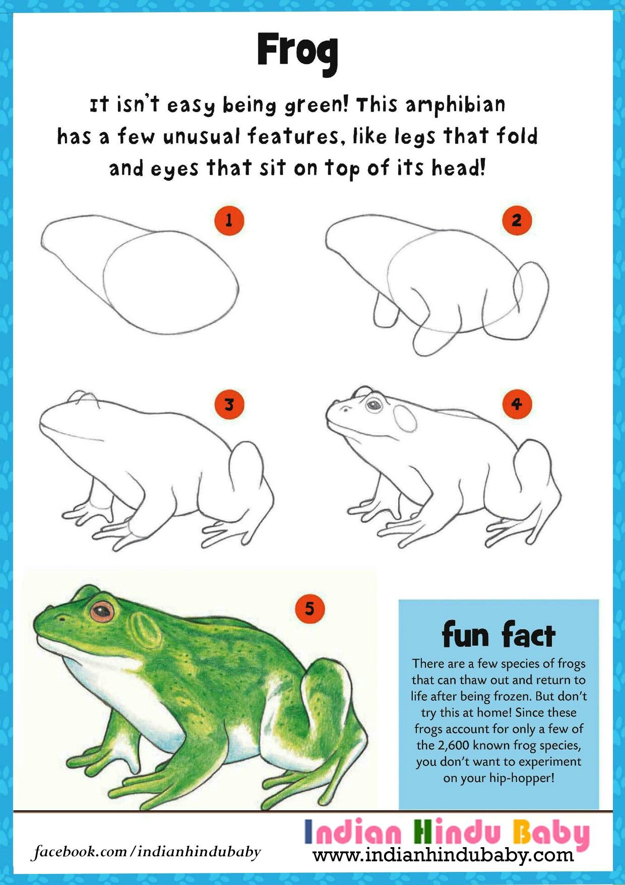 how to draw a frog frog drawing frogs and drawings