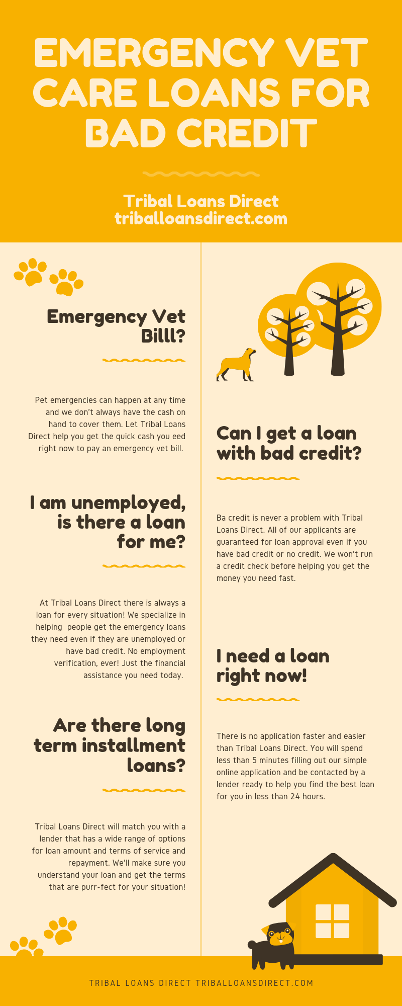 Emergency Vet Care Loans For Bad Credit Pet Resort Pet Care Dog Vet Care