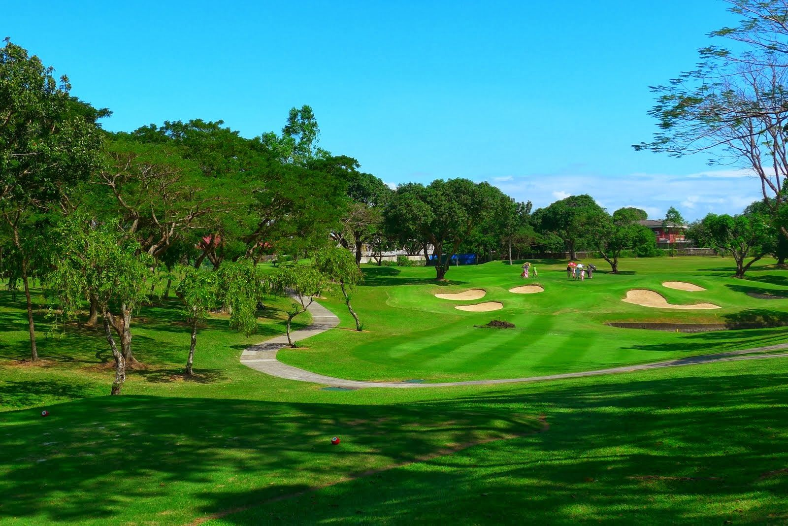 Philippine Golf Course Alabang Country Club Inc Golf Courses Golf Courses