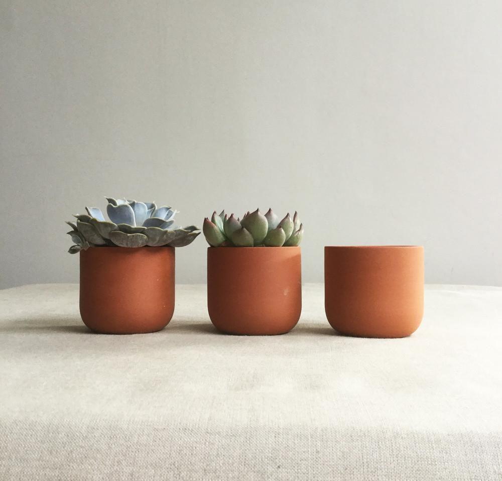 Terracotta Plant Pot By Sue Pryke Terracotta Plant Pots Painted Plant Pots Small Terracotta Pots