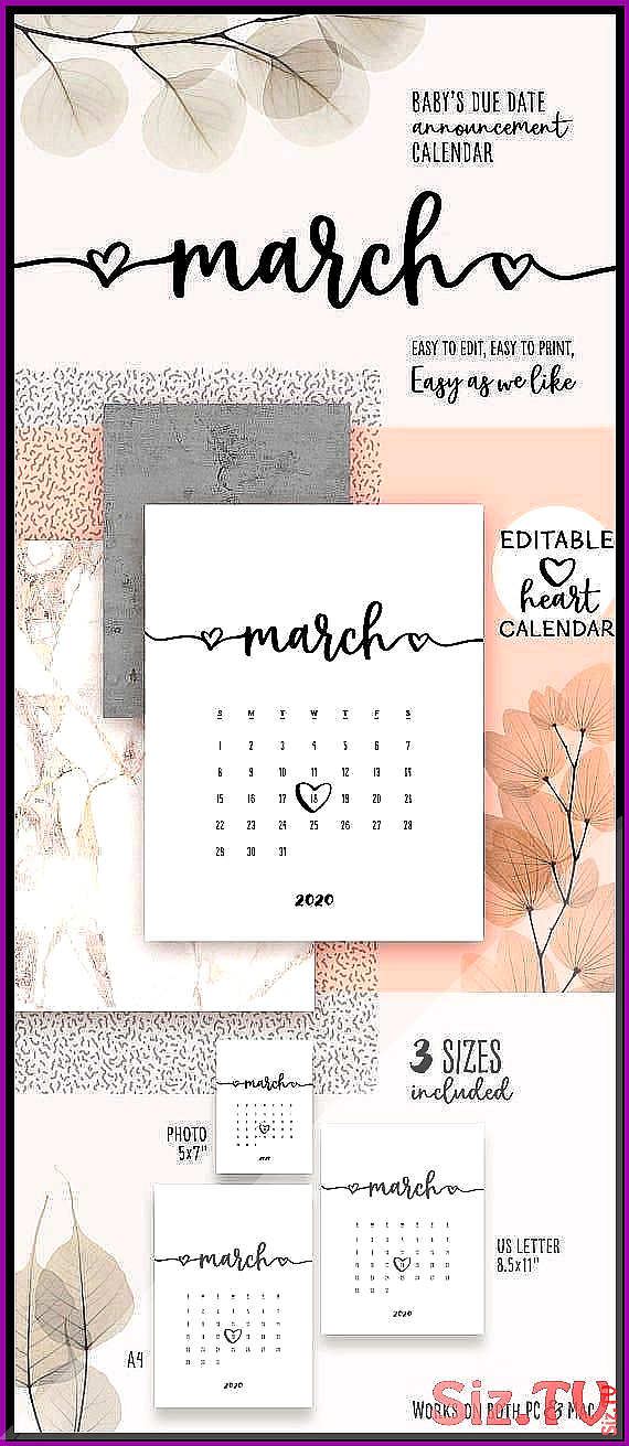 MARCH 2020 Printable Calendar Lovely Baby Due Date Announcement Pregnancy Calend…
