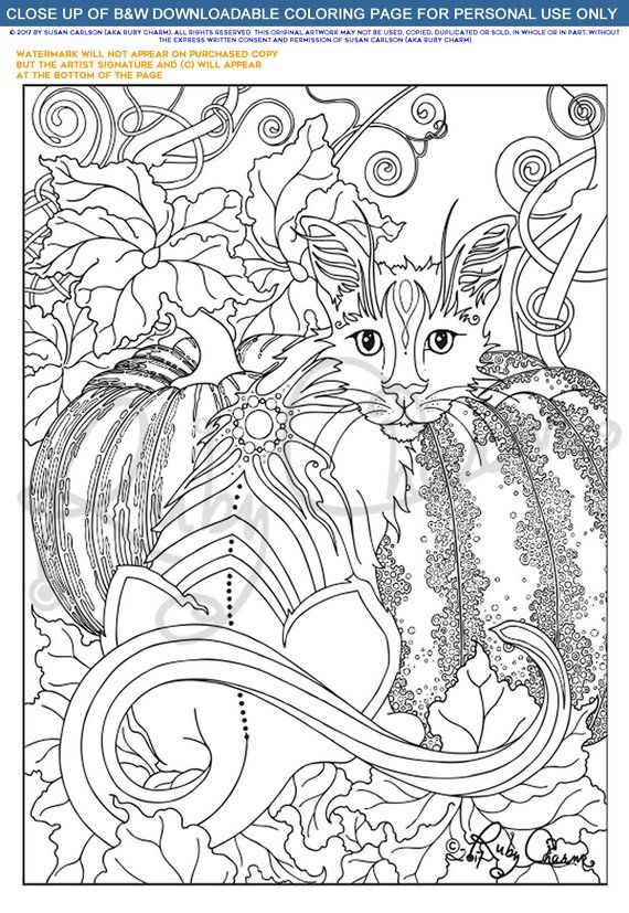 AUTUMN CAT download & print adult coloring page PDF, Ruby ...