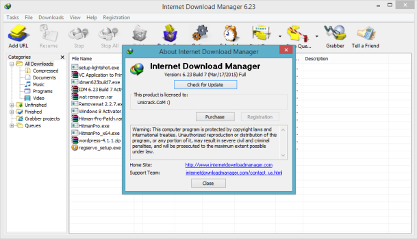download fake serial number remover idm