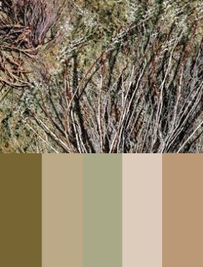 Mossy Oak Brush Color Palette | Camouflage Wedding | Camo ...
