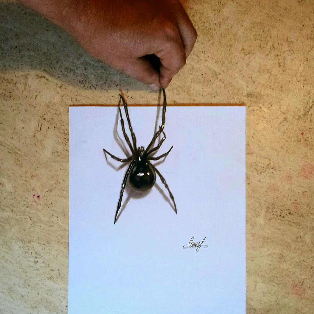 Realistic 3d Spider Drawing Spider 3d Art Drawing