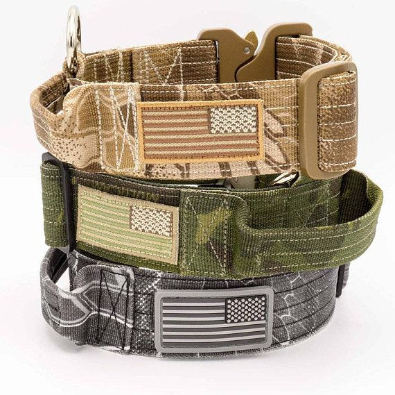 2c13fbf00d964d Military Style Dog Collar with Cobra Buckle and Handle
