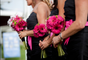 "Hot Pink Gerbera daisy bouquet accented with green hypernicum ""coffee bean"""