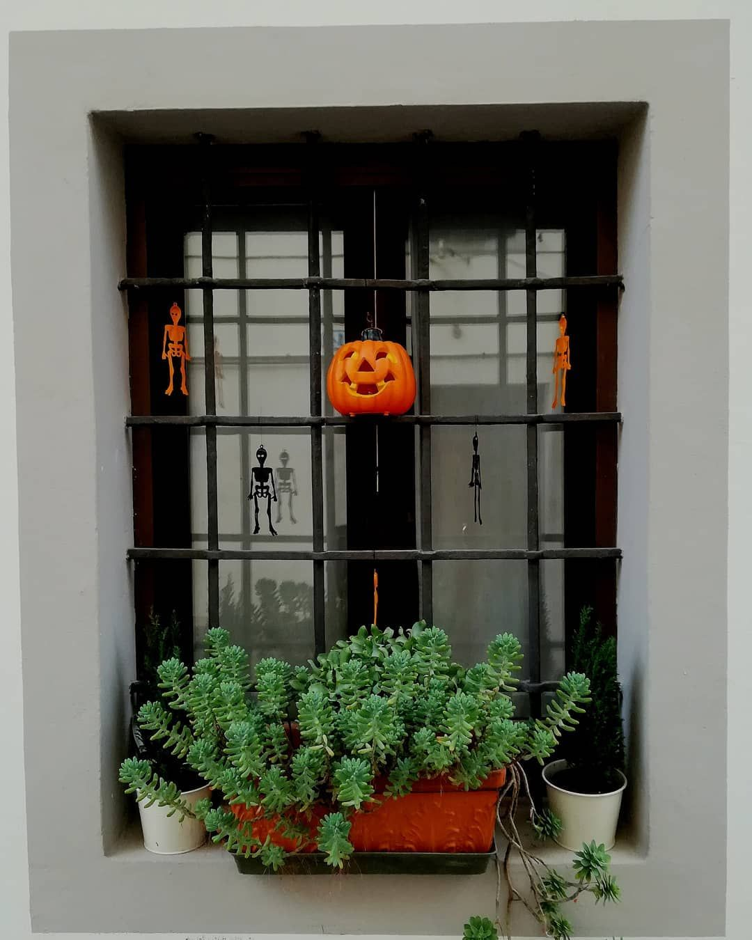 Rare Halloween Window Decorating Ideas You Canut Resist to Try in