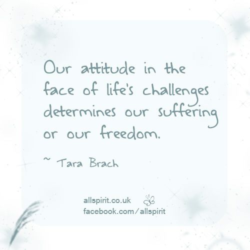 Tara Brach Quotes Brilliant Quotestara Brach  Google Search  Tara Brach  Pinterest