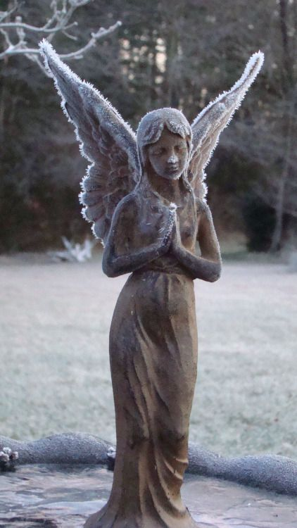 Angels! Angels everywhere!, Frosty Angel in the Memorial Garden by Stacey...