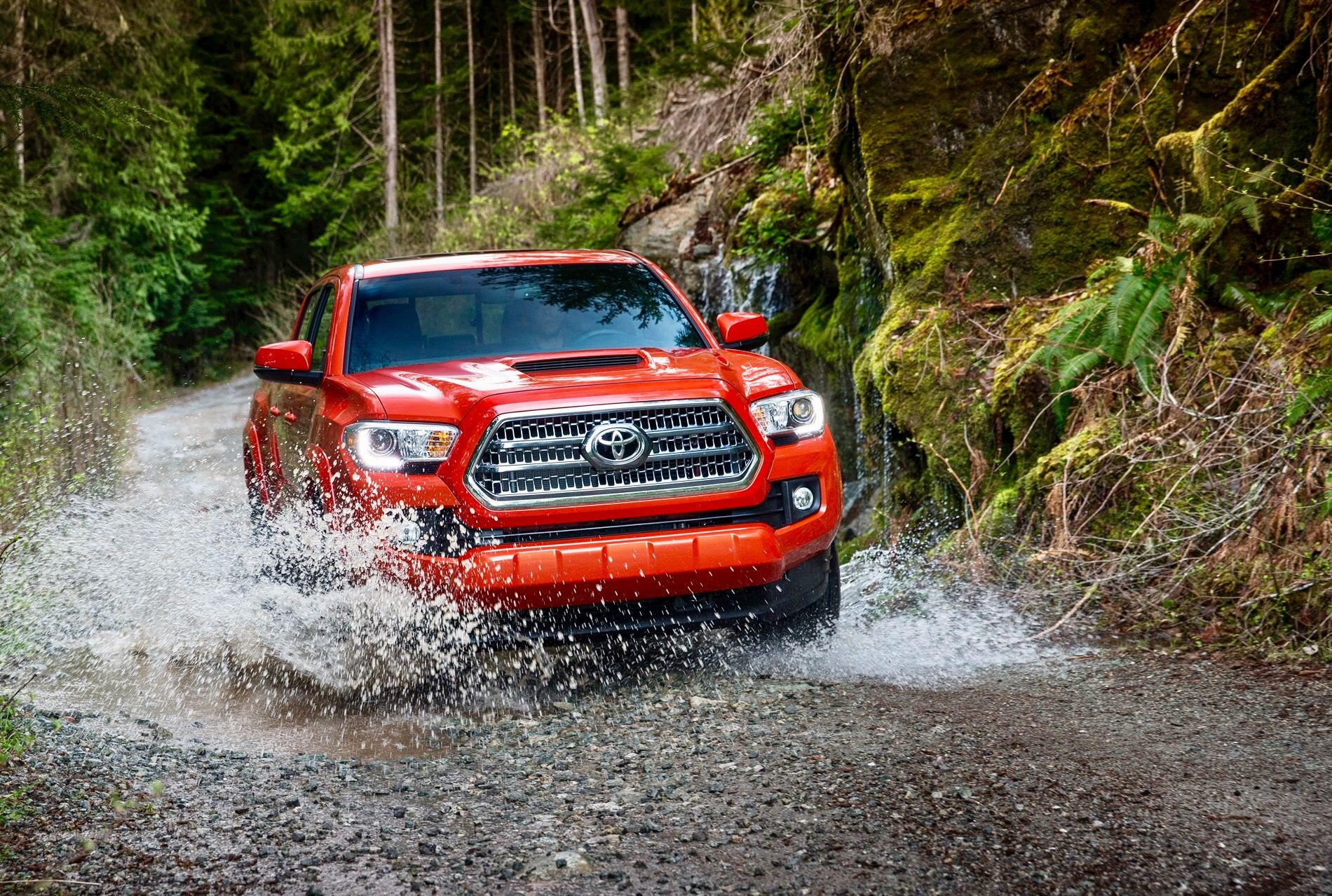 Toyota Toyota,