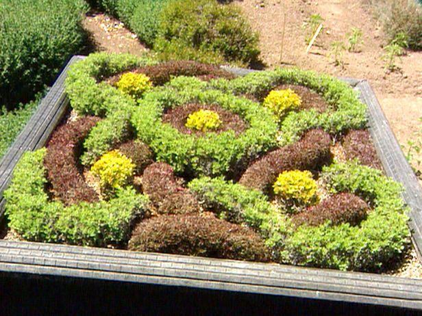 A Socialites Party Ready Garden Gardens Vegetable garden and Flowers