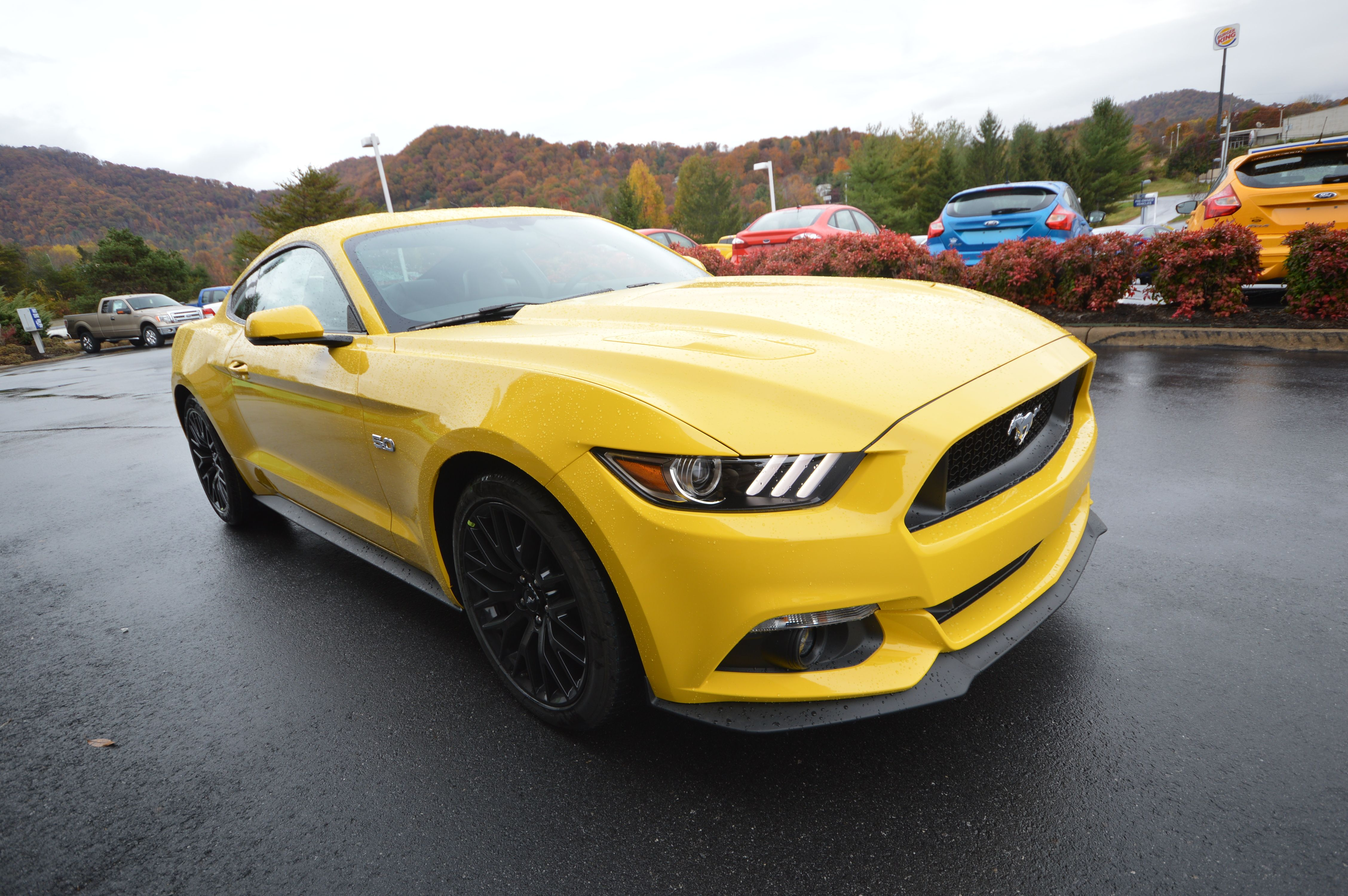 2015 Mustang Gt In Triple Yellow Ford Mustang Shelby Cobra Ford Mustang 2015 Mustang Gt