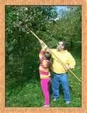 We used to pick apples and pears with an apple picker like this....oh the memories......