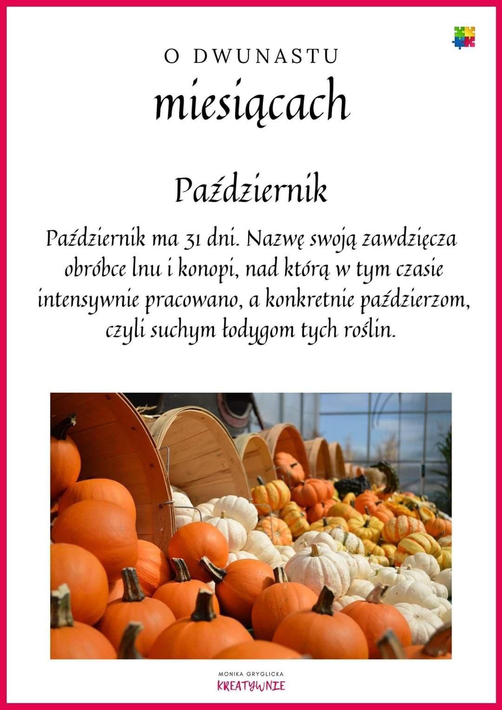 Pin By Bozena Grzyb On Pomysl In 2020 Education Pumpkin