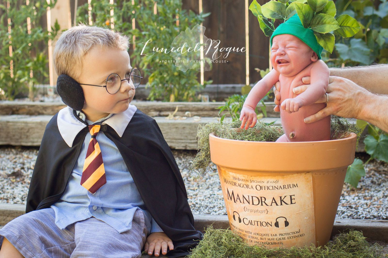 This Incredibly Cute Harry Potter-Themed Newborn Shoot Is Going Viral