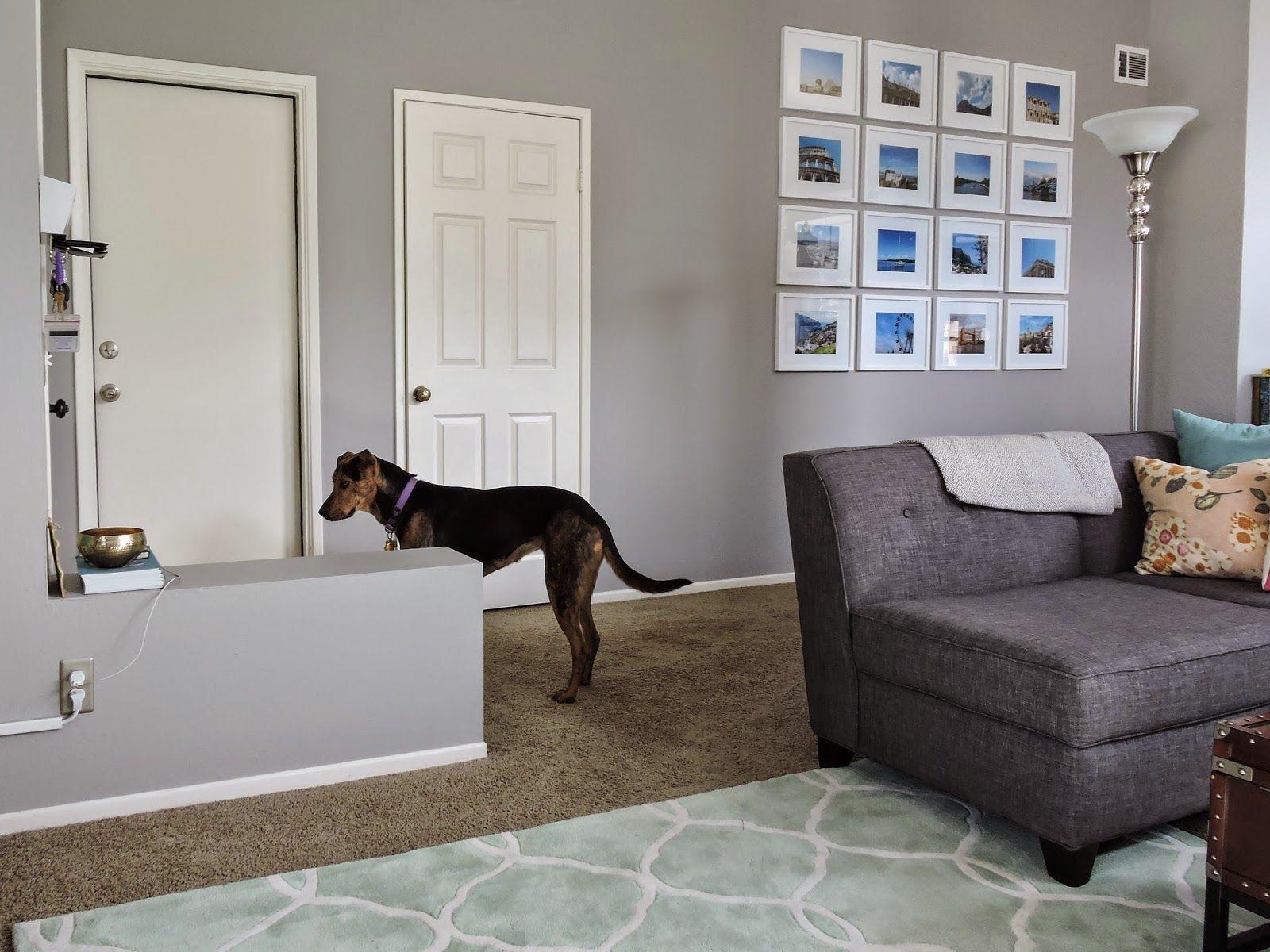 The Living Room San Antonio Delectable San Antonio Gray Benjamin Moore  Httpwww.haveashley Decorating Inspiration
